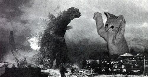 Godzilla kitten on the loose
